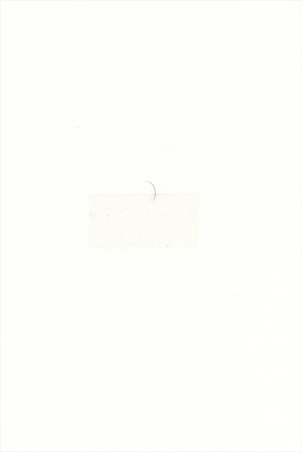 Untitled, 2009 - Eyelash and sellotape on paper; 15 X 10 cm